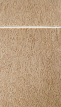Kitchen Cabinet Style - Pure 02